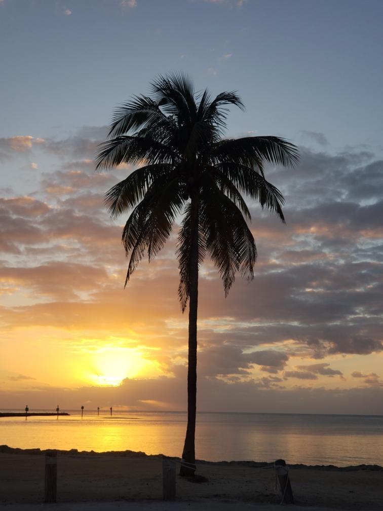 Caloosa Cove beach photo